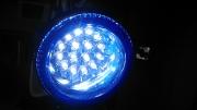 Universal Fog light-Blueno